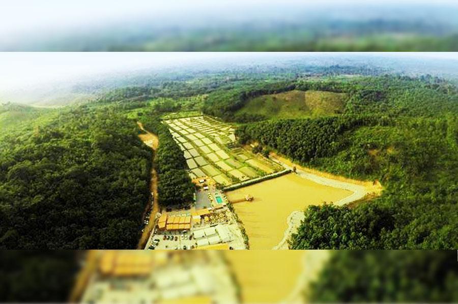 """""""Green Valley"""" à Brofodoumé (Côte d'Ivoire)"""