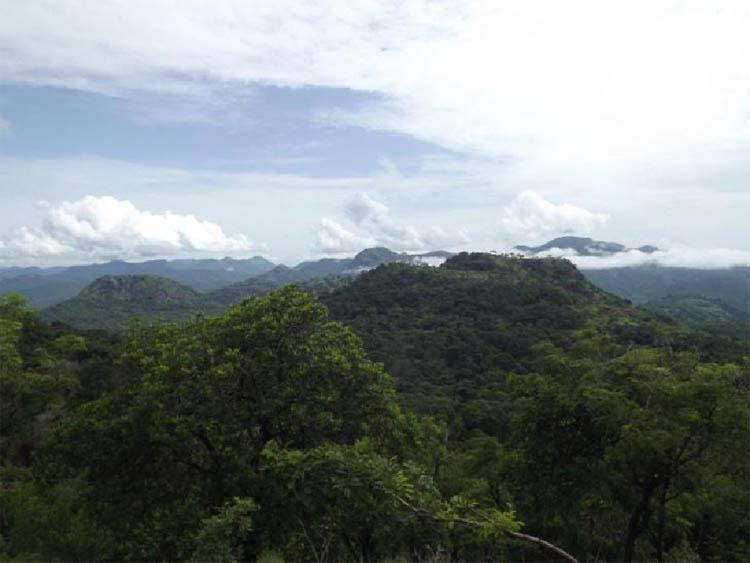 Monts au sud du Bafing